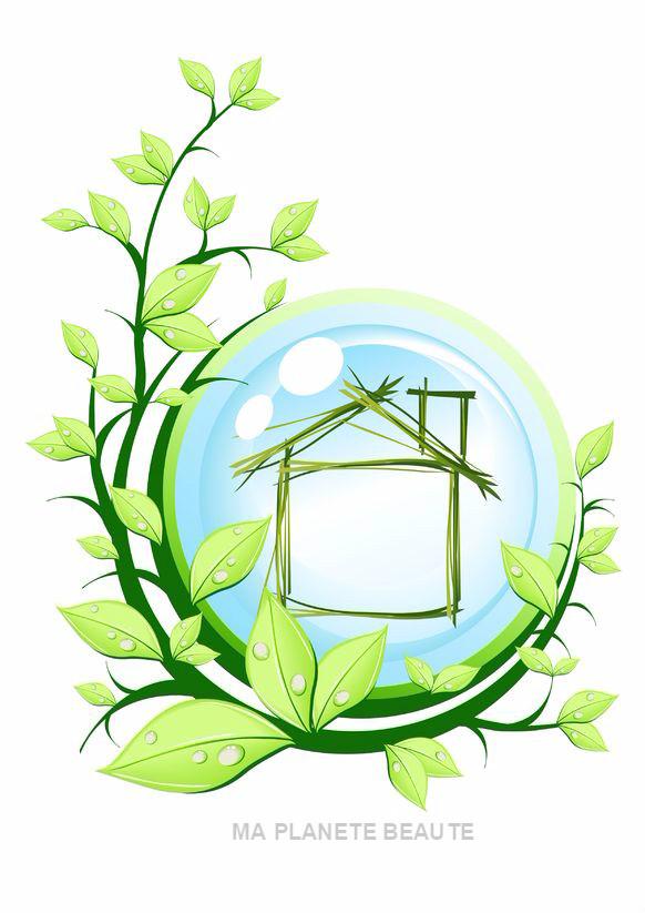 Le ménage écologique
